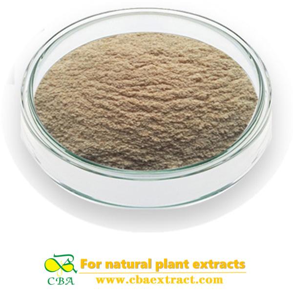 Oat Extract Beta GlucanOat Straw Extract Avena Sativa Extract