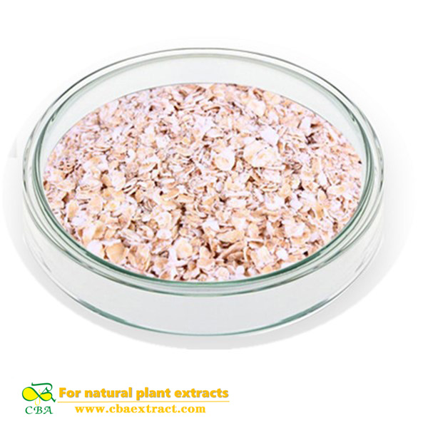 Made in china organic and natural oat extract oat protein