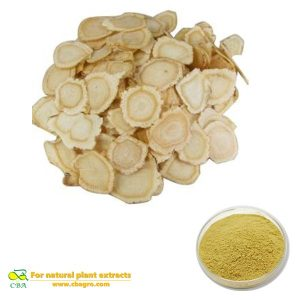 AMERICAN GINSENG EXTRACT Natural pure angelica sinensis root extract