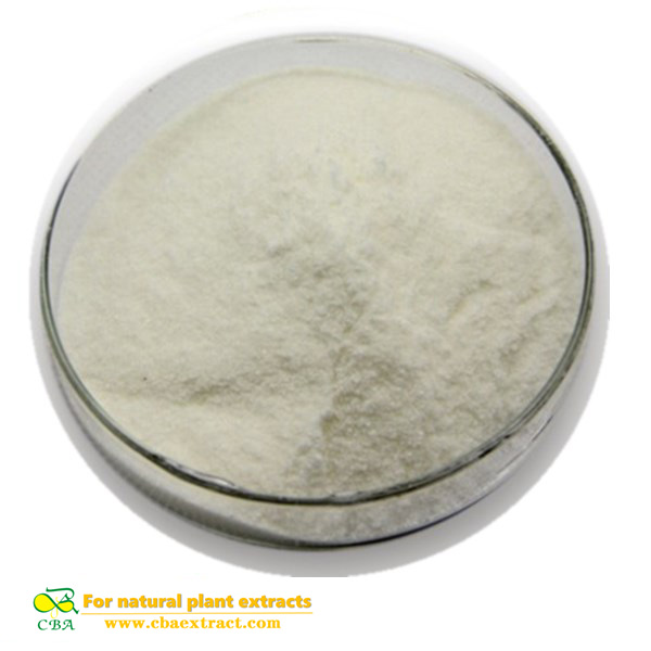 Competitive Price Food Additive Papain