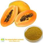 Papaya powder Papaya juice powder Papaya extract powder
