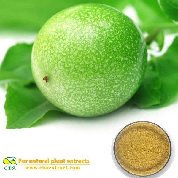 PASSION FLOWER EXTRACT Passionflower Extract Organic passion fruit powder passion flower extract powder Passiflora coerulea L Flavones 4%