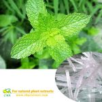 2021 CBA 100% pure  Menthol with factory pricepure natural Raw Material menthol pure oil menthol
