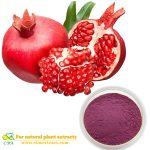 Pomegranate flower extract Polyphenols Ellagic acid Punicalagin