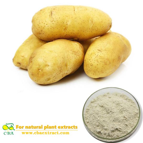 Potato powder extract