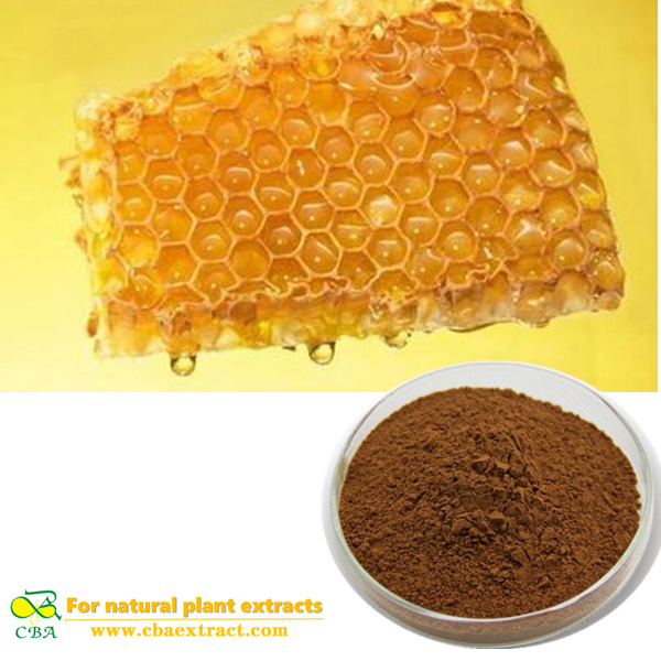 Natural Extract Bee Propolis Extract 98% Powder flavonoids