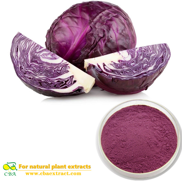 Purple cabbage powder