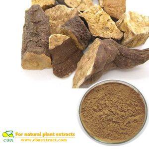 Radix polygoni mulitiflori Plant Extract Flavone Emodin Phosphatide Fallopia multiflora extract he shou wu extract Total anthraquinone