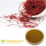 Chinese Medicine Saffron Extract Flos Carthami Extract Natural Safflower Extraction Powder Red Flower Extract Saffron Carthamin 2% for weight loss