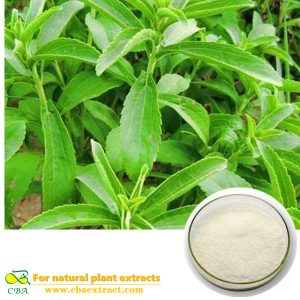 Stevia Extract sugar High Purity Natural Herbal Extract Stevia Sugar Rebaudiana Stevioside organic stevia leaf extract powder Stevia Rebaudiana Stevioside