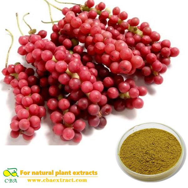 Schisandra Chinensis Extract premium quality Schisandra fruit extract Schisandra chinensis (Turcz.) Bailll