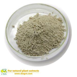 Sheep Placenta Extract Powder Sheep Placenta