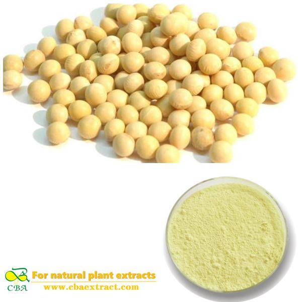 Soybean Extract Phosphatidylserine soybean isoflavones soybean extract powder