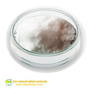 High Quality 100% Natural Stachyose Powder