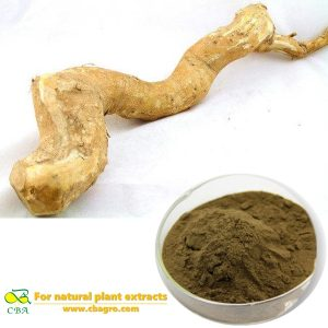 Tongkat Ali Root Extract Supply High Quality Eurycoma Longifolia Jack Root Extract PowderTongkat Ali Herbal ExtractTongkat Ali P.E.