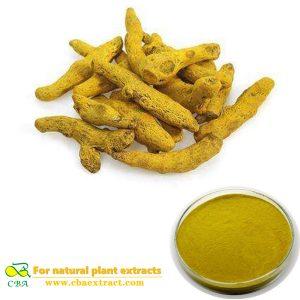 Turmeric Extract turmeric root extract powder 95% curcumin Food Additives Organic Turmeric Powder
