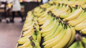 Banana plant extract could be key to creamier, longer lasting ice cream