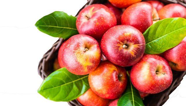 6 Major Health Benefits of Apple Cider Vinegar
