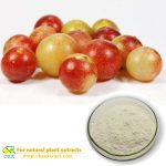 camu camu powder Camu Camu Fruit Extract