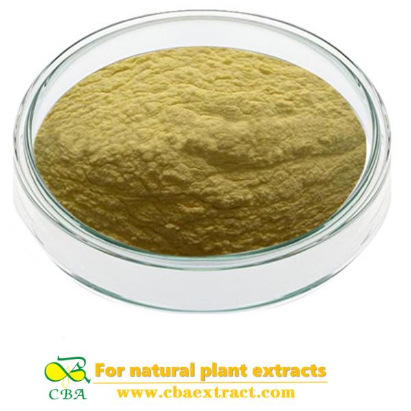 corn oligopeptides powder factory at best price