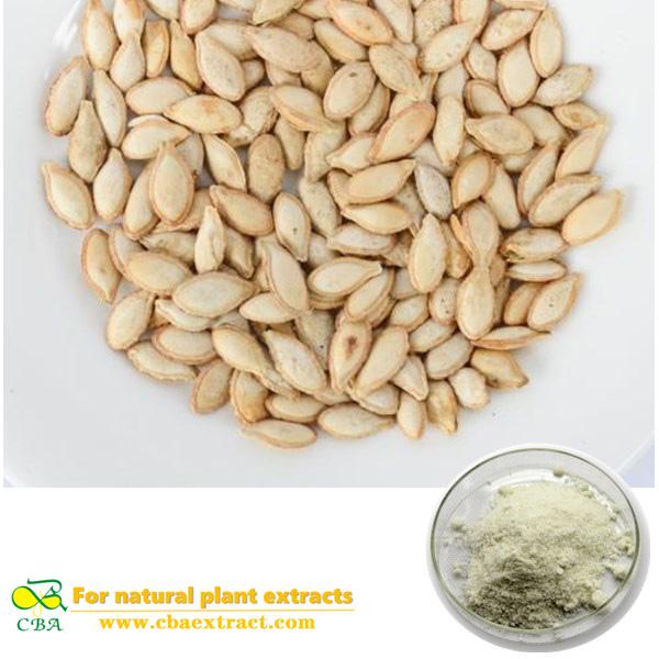 Cushaw seed extract Semen Moschatae Extract Cushaw Seed Extract Pumpkin Seed Extract