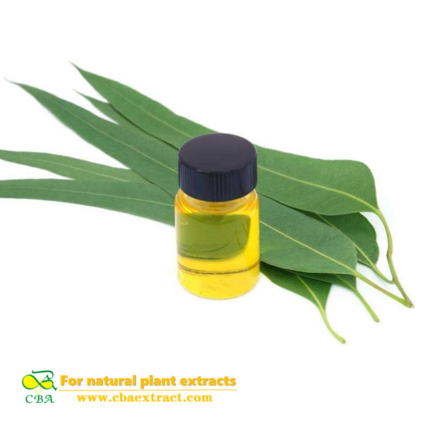 cosmetics grade natural eucalyptus essential oil