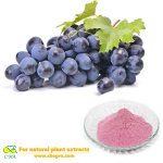 Natural Water Soluble Anti-aging and Anti-oxidant Grape Seed Extract Powder