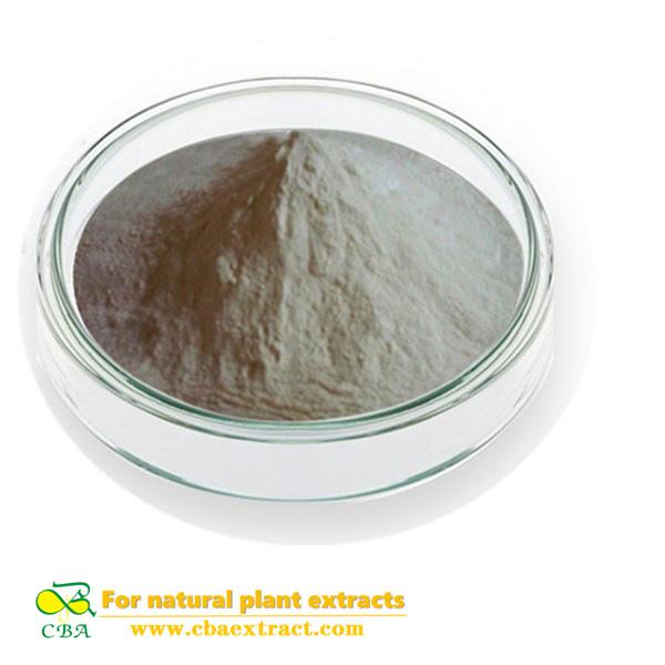 Competitive Price Food Additive peanut protein
