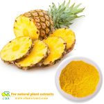 Pineapple Powder Tablets Granules Health Care Food Additives raw materials