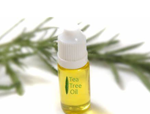 13 Common Uses and Benefits for Tea Tree Essential Oil