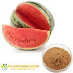 Watermelon Juice Concentrate Fruit Drink Powder