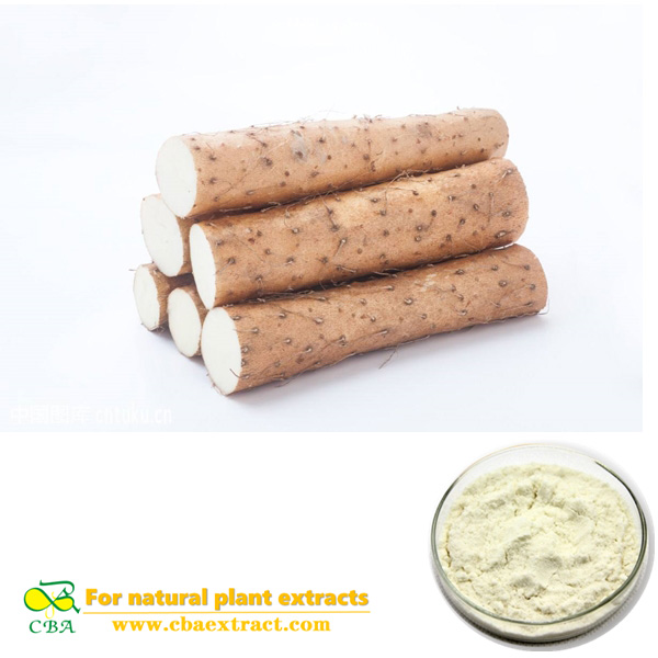 wild yam extract powder