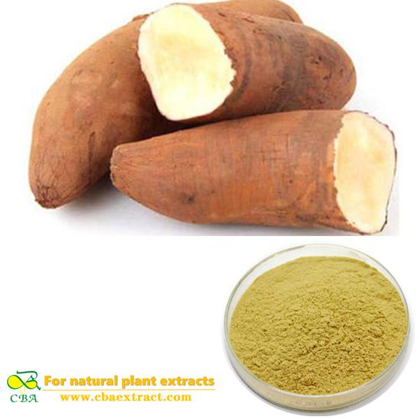 Yacon Fruit Powder